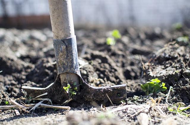 Digging-Deeper